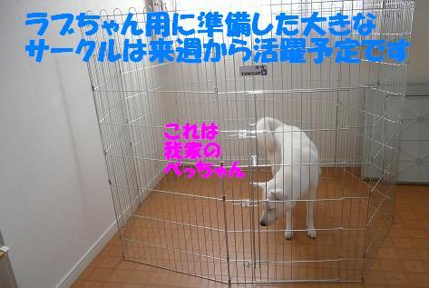 f0121712_22265364.jpg