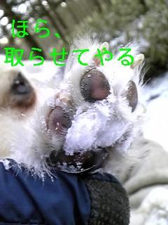 f0148927_10123461.jpg