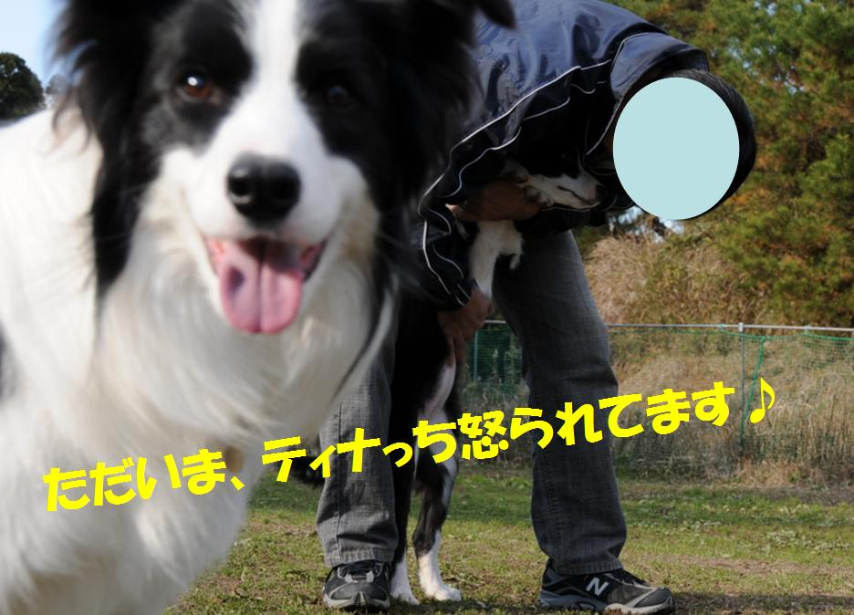 c0147241_21115753.jpg