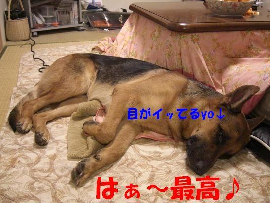 c0192541_1230387.jpg