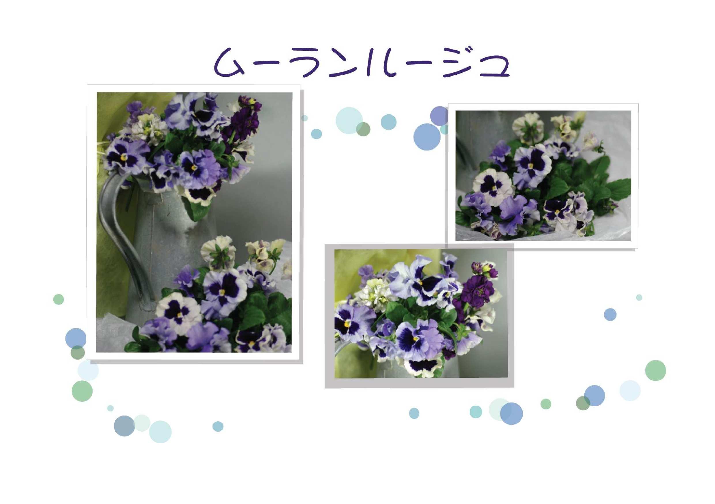c0134762_19441742.jpg