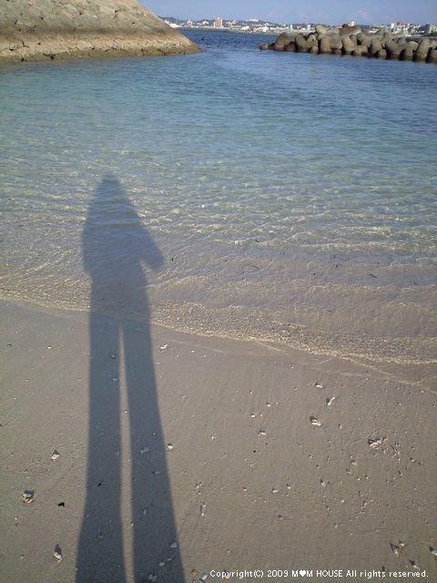 脚が長すぎ・・・・ ☆舞茸とほうれんそうのクリームパスタ♪ _c0139375_1048950.jpg