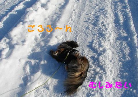 f0195891_20484967.jpg