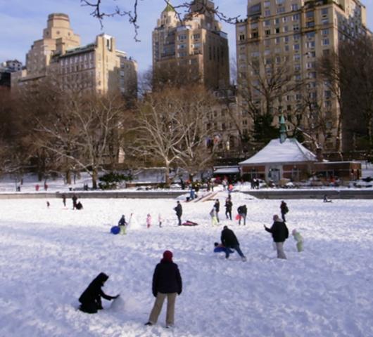 セントラルパークが雪国に・・・_b0007805_14375551.jpg