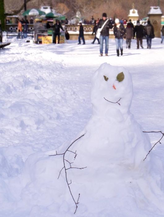 セントラルパークが雪国に・・・_b0007805_1444699.jpg