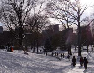 セントラルパークが雪国に・・・_b0007805_1451569.jpg