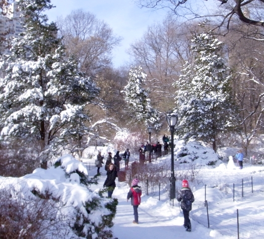 セントラルパークが雪国に・・・_b0007805_1454768.jpg