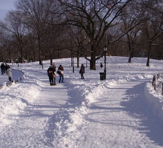 セントラルパークが雪国に・・・_b0007805_1472362.jpg