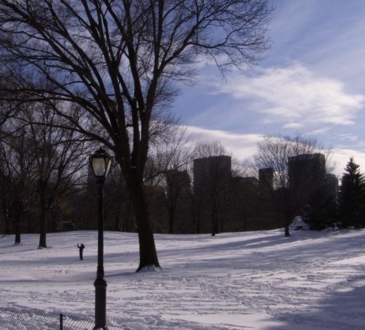 セントラルパークが雪国に・・・_b0007805_1475388.jpg