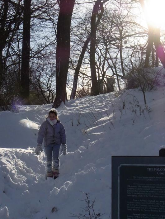 セントラルパークが雪国に・・・_b0007805_148746.jpg