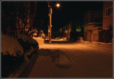 やっと雪が降りましたぁ~_b0019313_18171394.jpg
