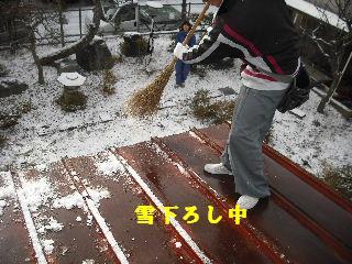 屋根改修工事_f0031037_19584249.jpg