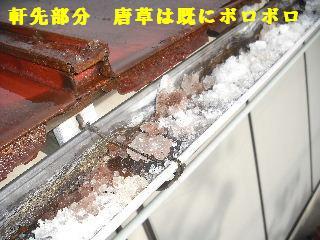 屋根改修工事_f0031037_19592851.jpg