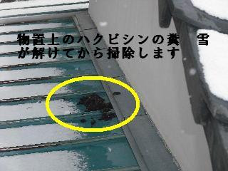 屋根改修工事_f0031037_20111589.jpg