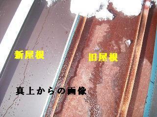 屋根改修工事_f0031037_2014540.jpg