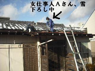 屋根改修工事_f0031037_2072563.jpg