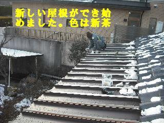 屋根改修工事_f0031037_2075163.jpg