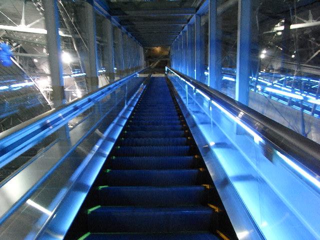 12月20日(日) 未来への階段?_d0082944_21452.jpg