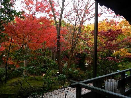 姫路城好古園の紅葉_c0057946_23352338.jpg