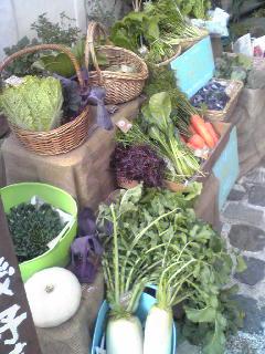 しろ菜と黒豆_a0138985_0311627.jpg
