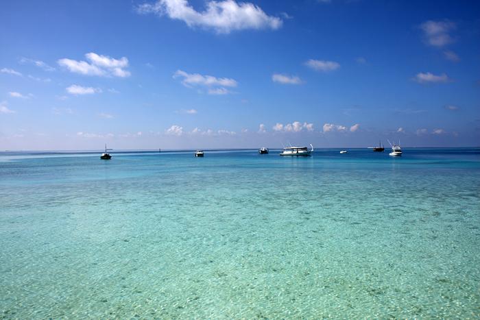 モルディブの海、本当に綺麗だった。地表まで光が届くところは、こんなにも水... モルディブ