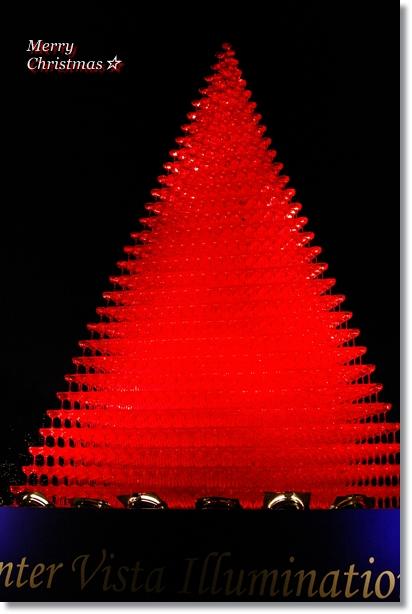 Champagne glass tree☆ 昭和記念公園_f0179404_216543.jpg