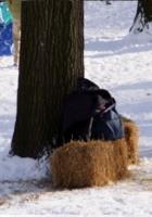 雪ソリ遊びから学ぶこと_b0007805_6411623.jpg