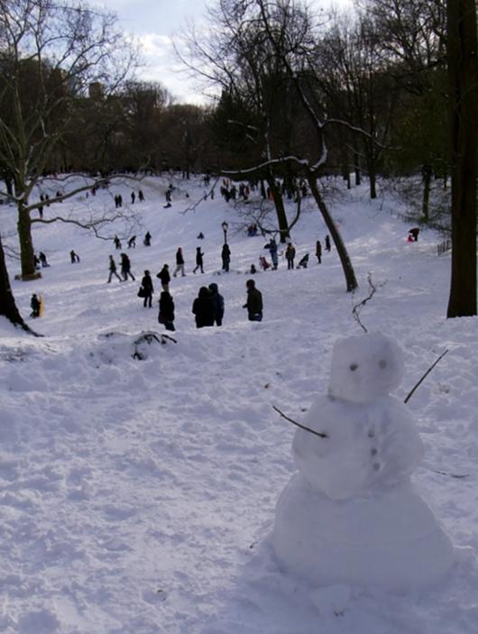 雪ソリ遊びから学ぶこと_b0007805_6422138.jpg