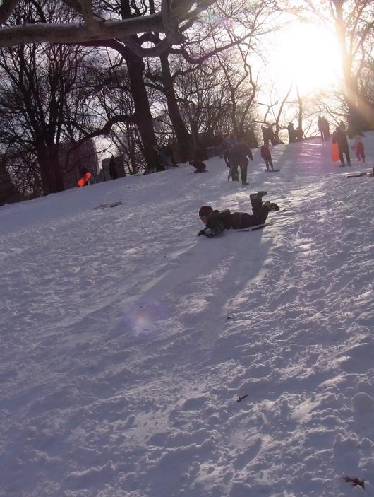 雪ソリ遊びから学ぶこと_b0007805_6424682.jpg