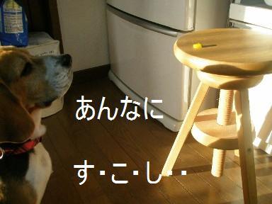 c0205806_1813868.jpg