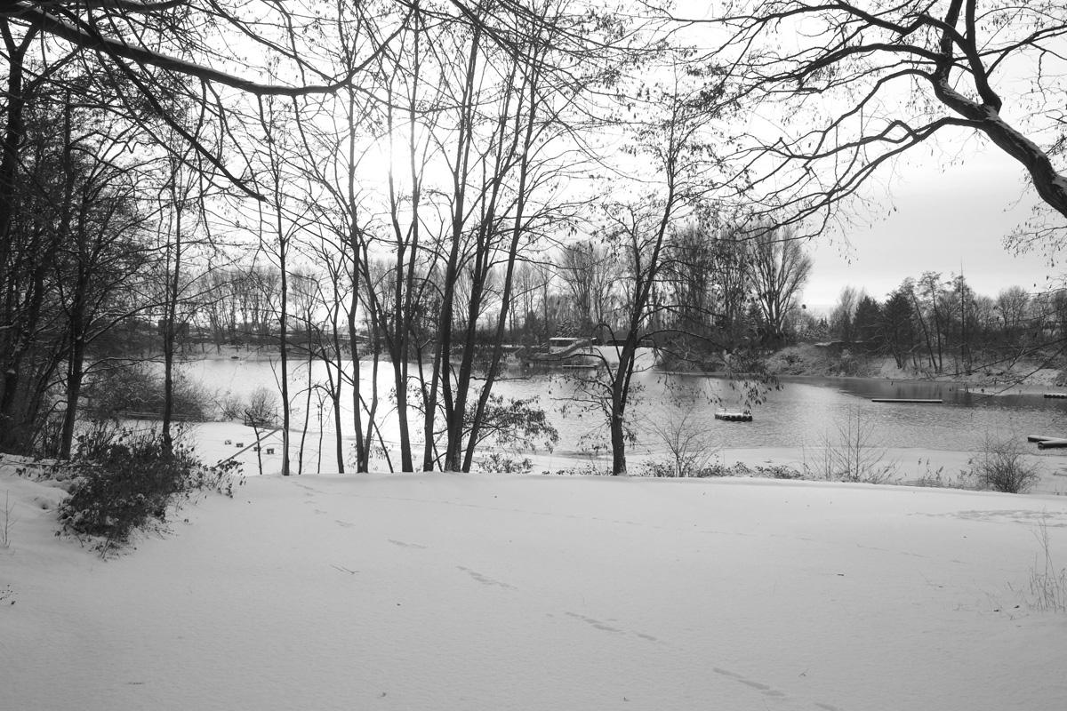雪にも負けず定点観測_b0148617_5431151.jpg