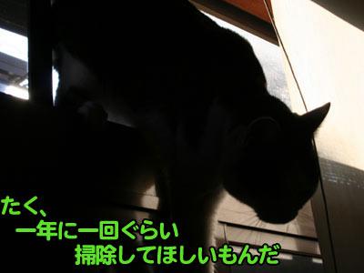 c0166018_1294933.jpg