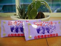 美味しいお菓子とクリスマス☆_f0129627_1775660.jpg