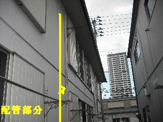 f0031037_2327328.jpg