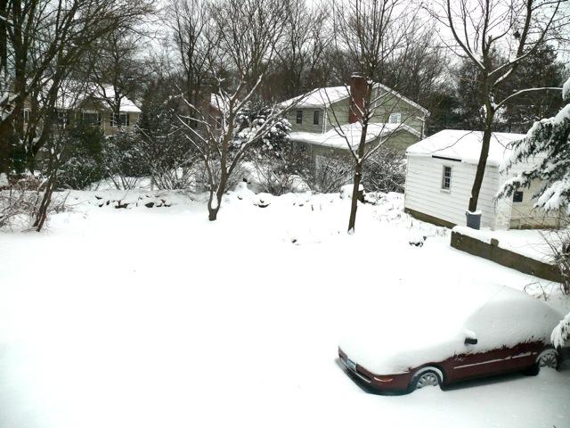 雪_f0132845_130567.jpg