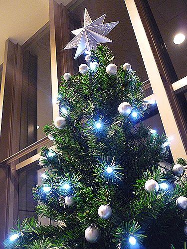 Heartful 。。。Thankful。。。 クリスマスの贈り物。。。.☆*:.。.☆*†_a0053662_164936.jpg
