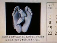 d0065364_0234073.jpg