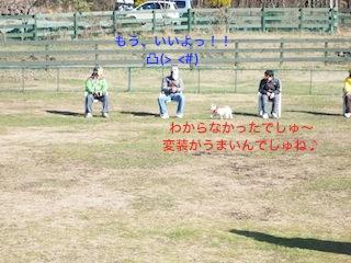 b0177868_12194295.jpg