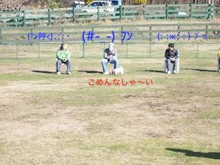 b0177868_1220394.jpg