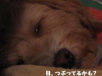 12月22日 _e0136815_930874.jpg