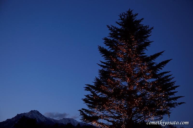 クリスマス・イルミネーション_b0179231_1331630.jpg