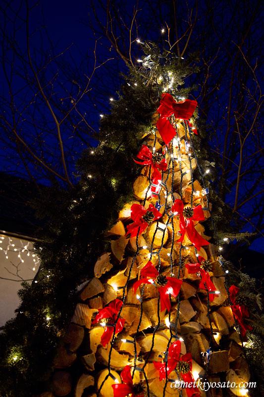 クリスマス・イルミネーション_b0179231_1393287.jpg