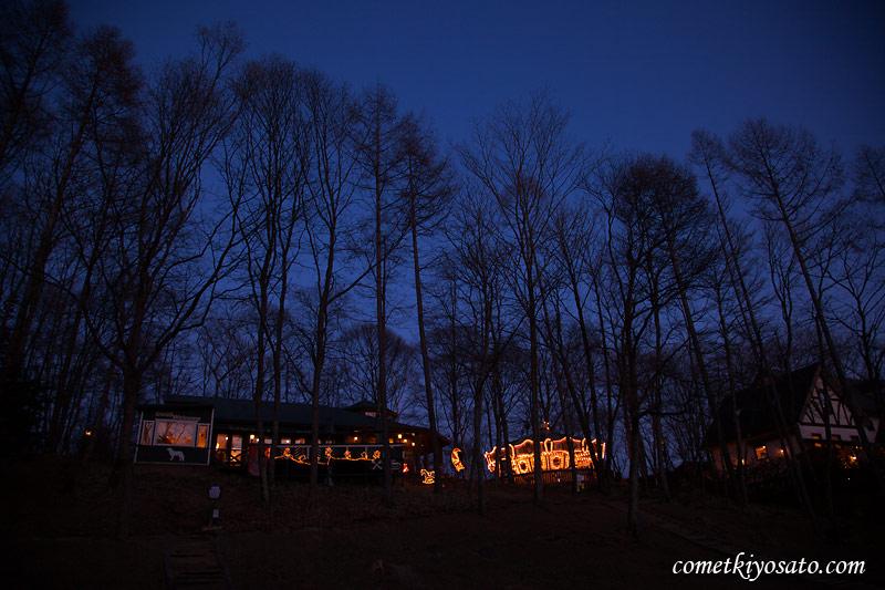 クリスマス・イルミネーション_b0179231_1394495.jpg