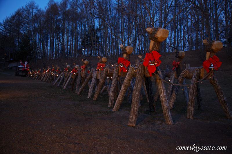 クリスマス・イルミネーション_b0179231_1395425.jpg