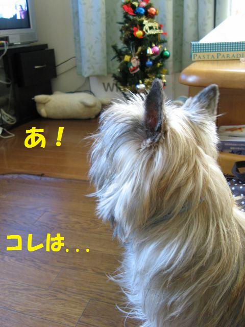 c0202659_024652.jpg
