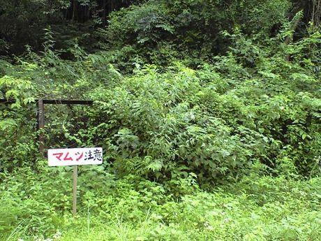 四国の鉄道 6_b0005281_23495518.jpg