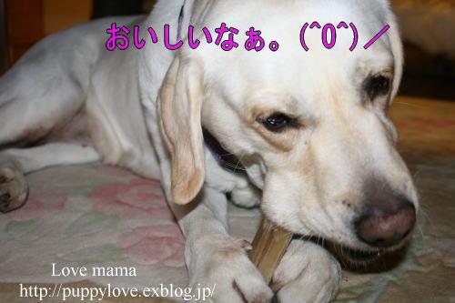b0136683_104219.jpg