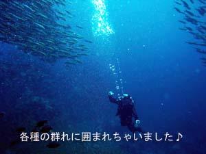 クルーズ最高☆_f0144385_2353243.jpg