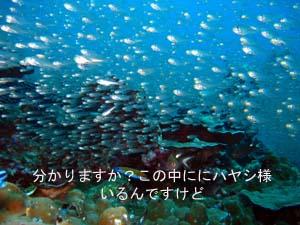 クルーズ最高☆_f0144385_2354271.jpg