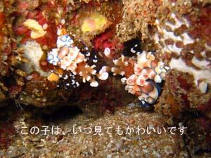 クルーズ最高☆_f0144385_2354336.jpg